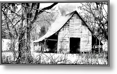Timeless In Black And White Metal Print by Betty LaRue
