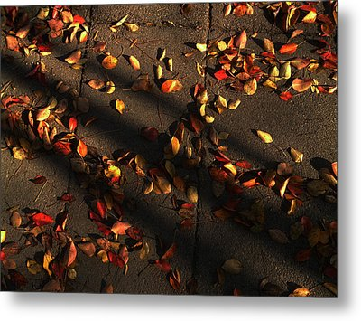 Timeless Metal Print by Lucy D