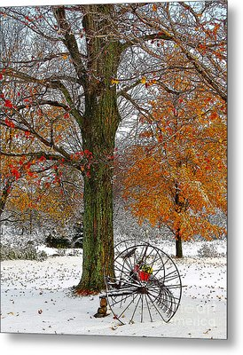 To Everything There Is A Season... Metal Print by Diane E Berry