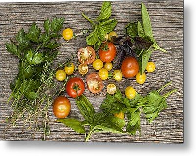 Tomatoes And Herbs Metal Print by Elena Elisseeva