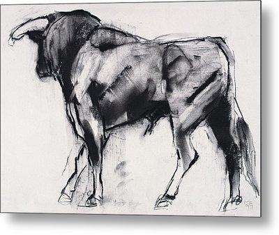 Toro Azul   Study Metal Print by Mark Adlington