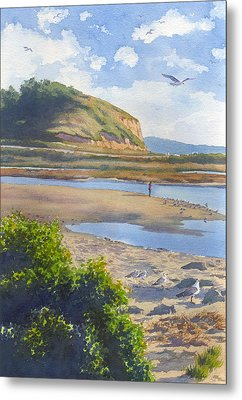 Torrey Pines Inlet Metal Print by Mary Helmreich