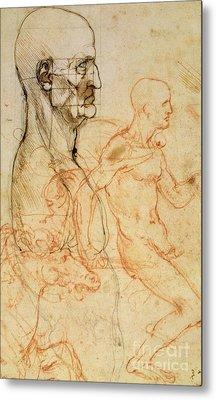 Torso Of A Man In Profile Metal Print by Leonardo da Vinci