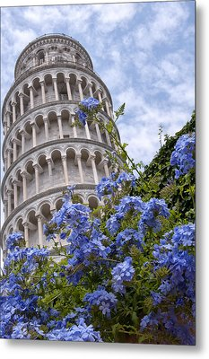 Tower Of Pisa With Blue Flowers Metal Print by Melany Sarafis