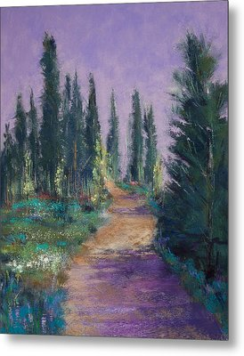 Trail In The Woods Metal Print by David Patterson