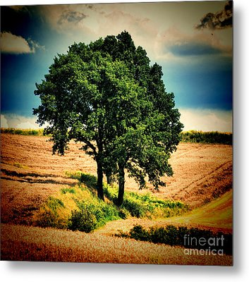 Tree Alone Metal Print by Boon Mee