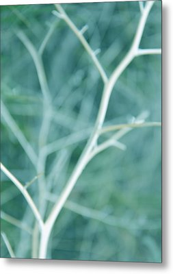 Tree Branches Abstract Turquoise Metal Print by Jennie Marie Schell