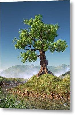 Tree Metal Print by Daniel Eskridge
