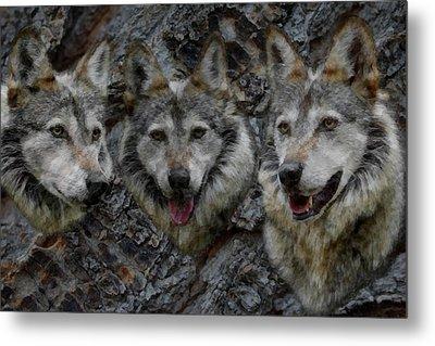 Tree Of Wolves Metal Print by Ernie Echols
