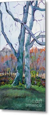 Trees By The Stream Metal Print by Janet Felts