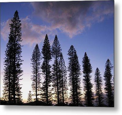 Trees In Silhouette Metal Print by Adam Romanowicz