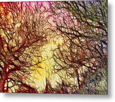 Trees Of The Four Seasons Metal Print by Kaye Menner