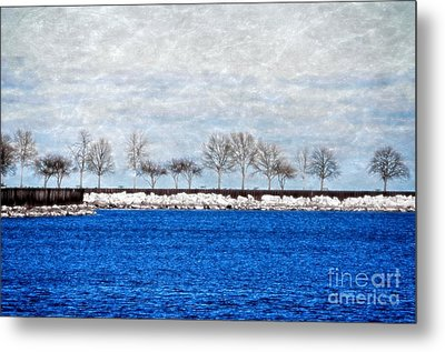 Trees On The Edge Metal Print by Mary Machare
