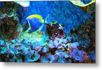 Tropical Seas Powder Blue Tang  Metal Print by Rosemarie E Seppala