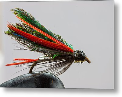 Trout Fly  Metal Print by Craig Lapsley