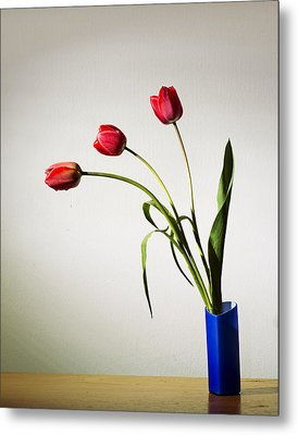 Tulip Composition Metal Print by Ivan Vukelic