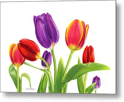 Tulip Garden On White Metal Print by Sarah Batalka