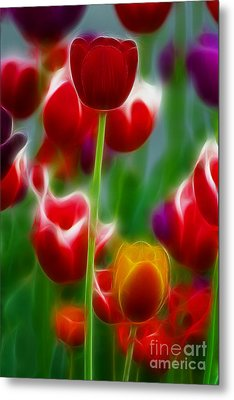 Tulips-7069-fractal Metal Print by Gary Gingrich Galleries