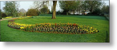 Tulips In Hyde Park, City Metal Print by Panoramic Images