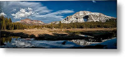 Tuolumne Meadows Metal Print by Cat Connor