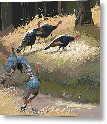 Turkeys In The Fall Sun Metal Print by Pam Little