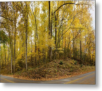 Turned The Brights On Metal Print by Heather Applegate