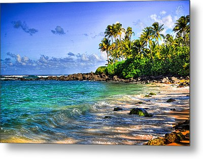 Turtle Beach Metal Print by Kelly Wade