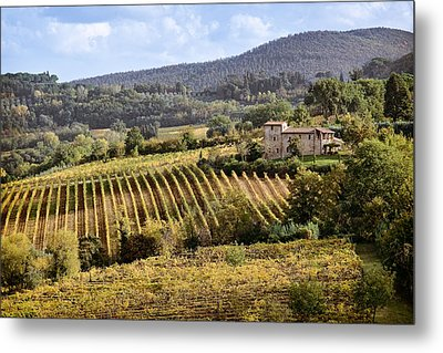 Tuscan Valley Metal Print by Dave Bowman