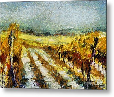 Tuscan Vineyard Metal Print by Dragica  Micki Fortuna