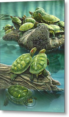 Tutle Pond Metal Print by Larry Taugher