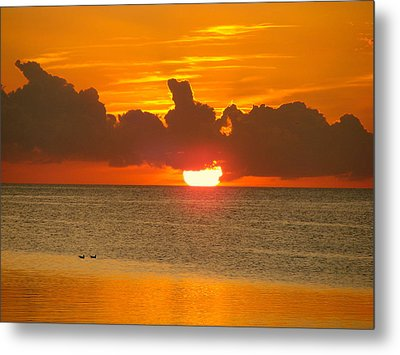 Two Birds And A Sun Metal Print by Morgan Jaynes