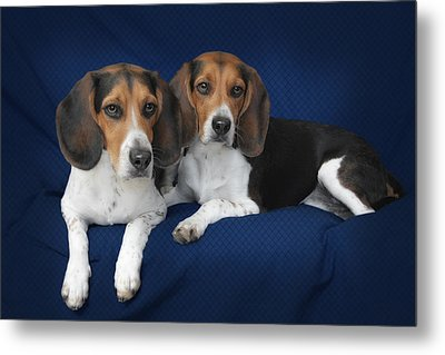 Two Brothers Metal Print by Christine Till