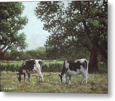 Two Cows In Field At Throop Dorset Uk Metal Print by Martin Davey