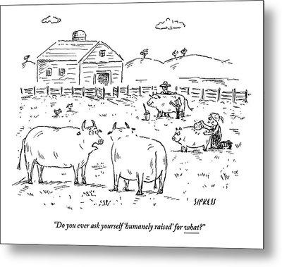 Two Cows On A Farm Talking Metal Print by David Sipress