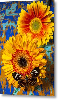 Two Golden Mums With Butterfly Metal Print by Garry Gay