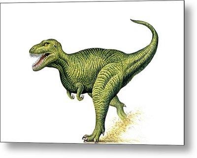 Tyrannosaurus Rex Metal Print by Deagostini/uig