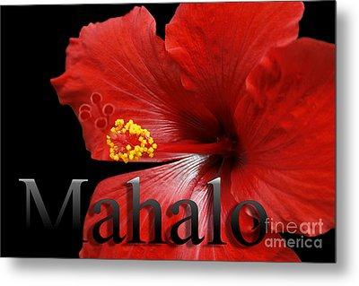 Ula Anoano Hanohano Red Tropical Hibiscus Mahalo Metal Print by Sharon Mau