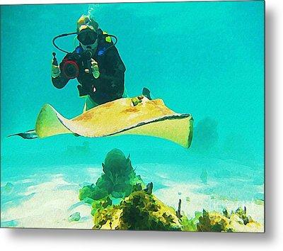 Underwater Photographer And Stingray Metal Print by John Malone Halifax Artist