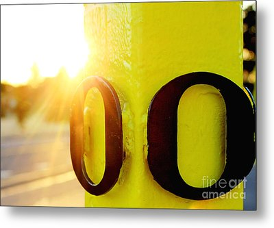 Uo 6 Metal Print by Michael Cross