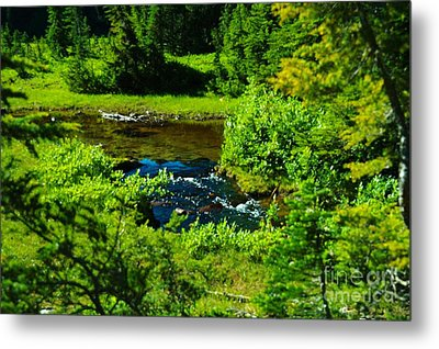 Upper Dewey Creek Metal Print by Jeff  Swan