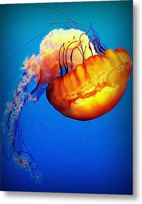 Upside Down Jelly Metal Print by Faith Williams