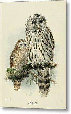 Ural Owl Metal Print by J G Keulemans