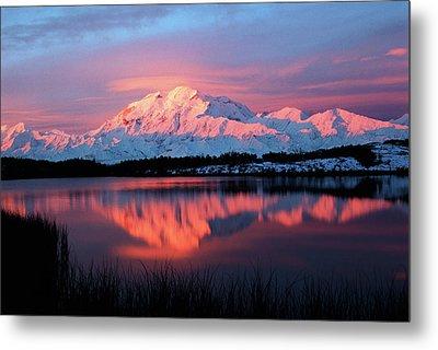 Usa, Alaska, Denali National Park Metal Print by Hugh Rose