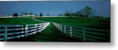 Usa, Kentucky, Lexington, Horse Farm Metal Print by Panoramic Images