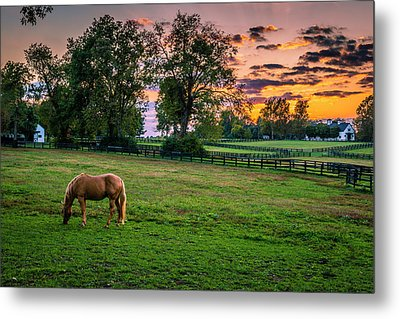 Usa, Lexington, Kentucky Metal Print by Rona Schwarz