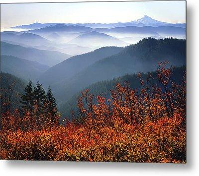 Usa, Washington, Columbia River Gorge Metal Print by Jaynes Gallery