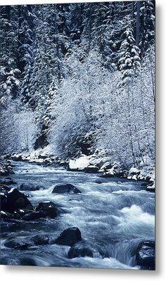Usa, Willamette National Forest Oregon Metal Print by Greg Vaughn
