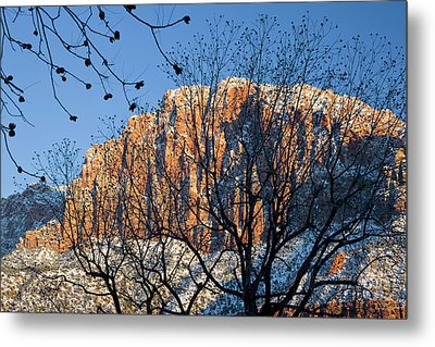 Utah Usa View Of The Watchman In Zion Metal Print by Scott T. Smith