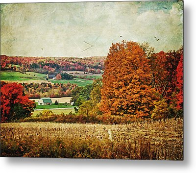 View From The Hill... Metal Print by Lianne Schneider