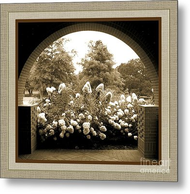 View To The Garden Metal Print by Darla Wood